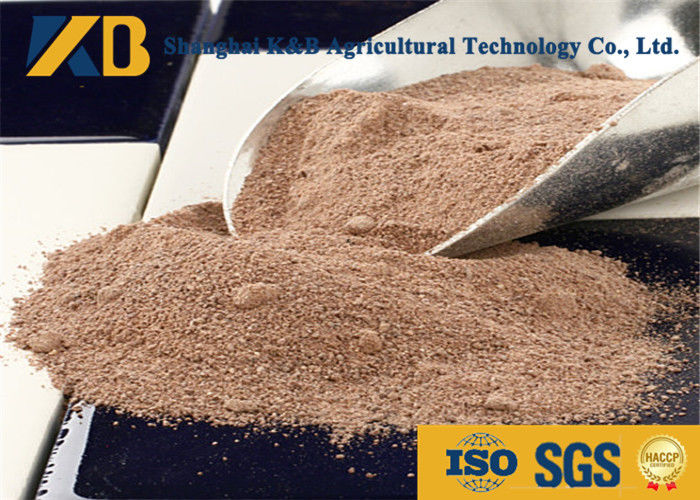 Plant Source Raw Brown Rice Protein Powder Feed Grade For Egg Chicken
